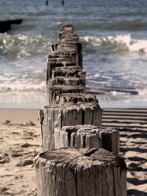 Die für Zeeland typischen Wellenbrecher aus Holzstämmen