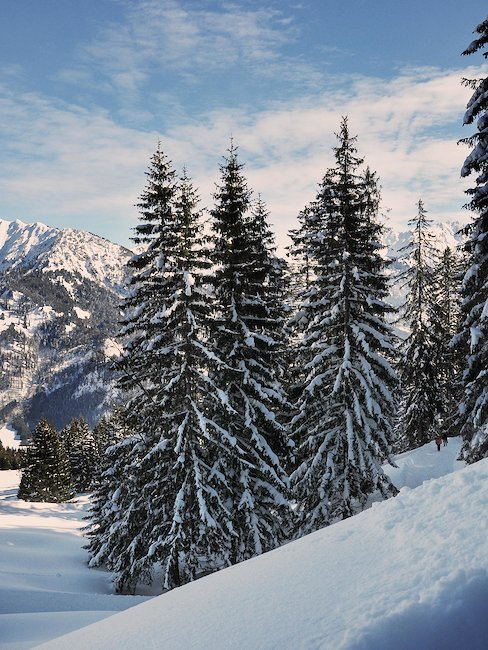 Winterlandschaft in den Bergen bei Oberjoch