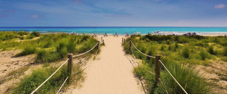 Zandweg naar de turquoise zee