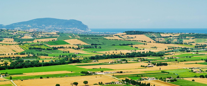 Mar Adriatico e campi verdi, Marche.