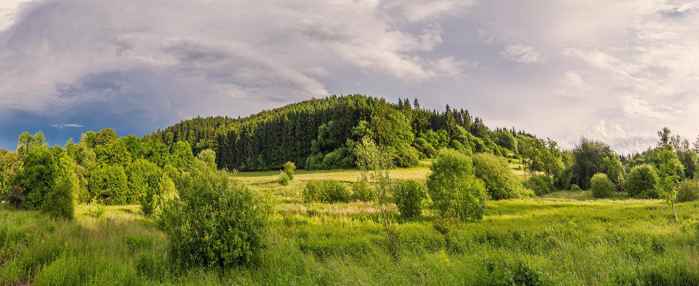 Ferienwohnungen und Ferienhäuser in Fischbach bei Dahn