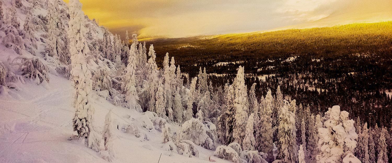 Winterlandschaft in Idre