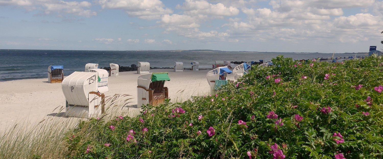 Ferienwohnungen und Ferienhäuser in der Hohwachter Bucht