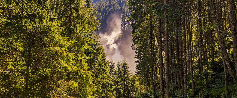 Wasserfall in den Wäldern