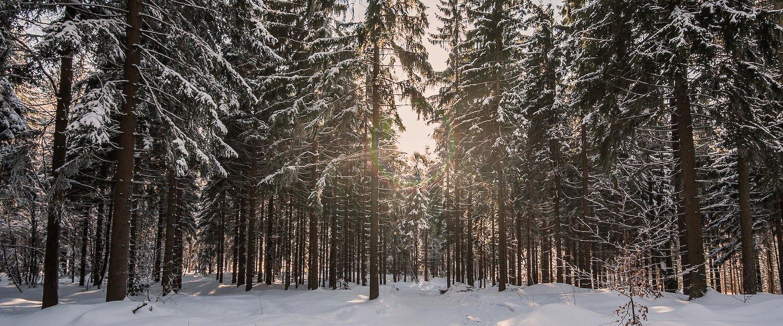 Vacation Rentals in Fichtelgebirge