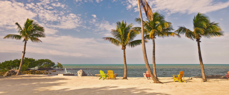 Zandstrand met palmbomen aan de Florida Keys