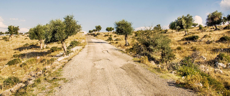 Apuliens Landschaft