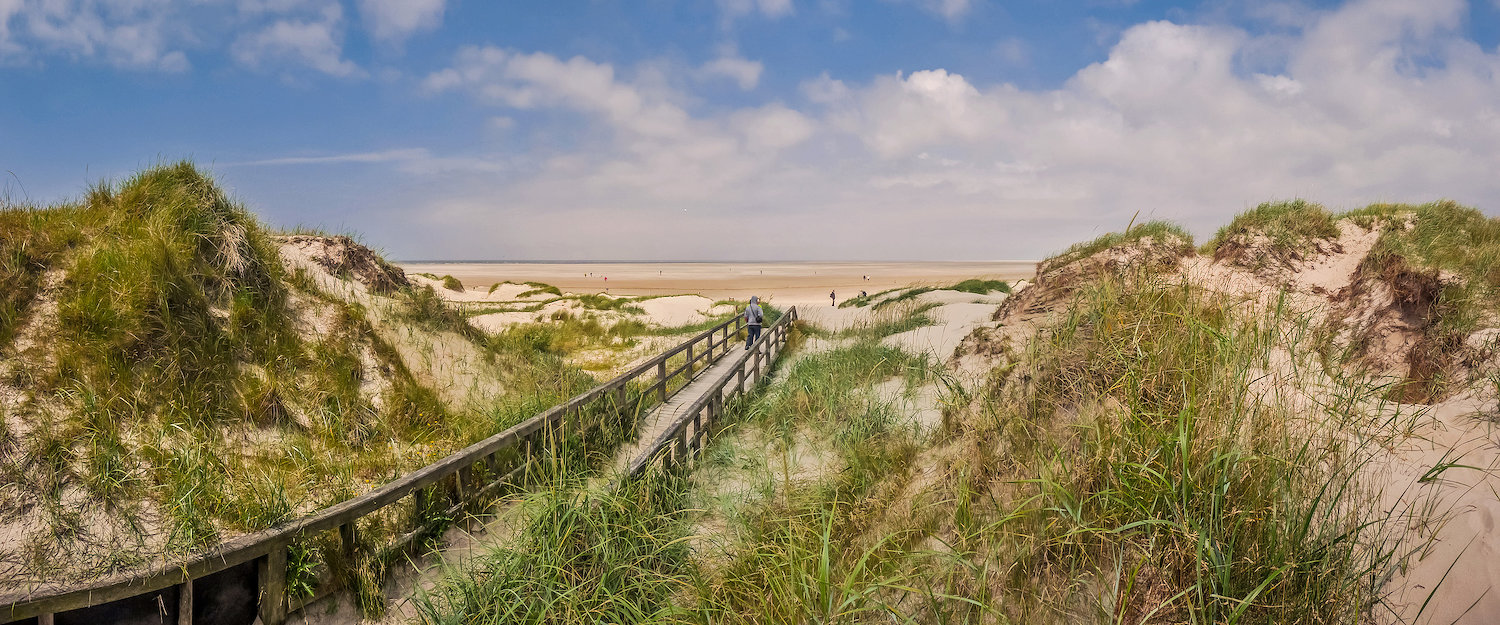Long footbridge through beautiful North Sea dune