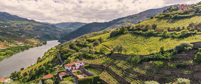 Apartamentos e Casas de Férias no Vale do Douro