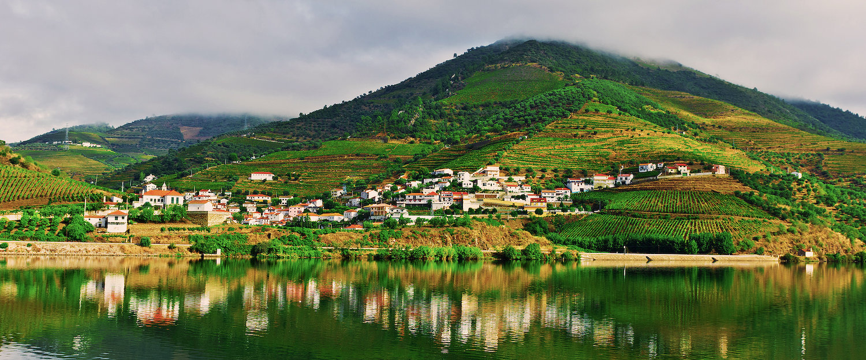 Paisagem Típica do Vale do Douro