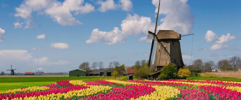 Domy i apartamenty wakacyjne w Holandii