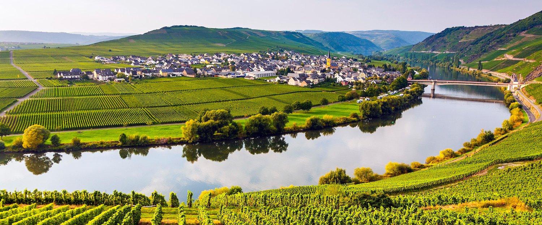Vue sur la Moselle et les vignes, Allemagne