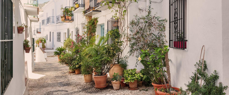 Calles arabes y casas blancas en Frigilana