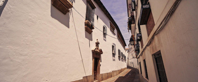 Las típicas casas andaluzas