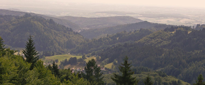 Traumhafte Landschaft um Bad Säckingen