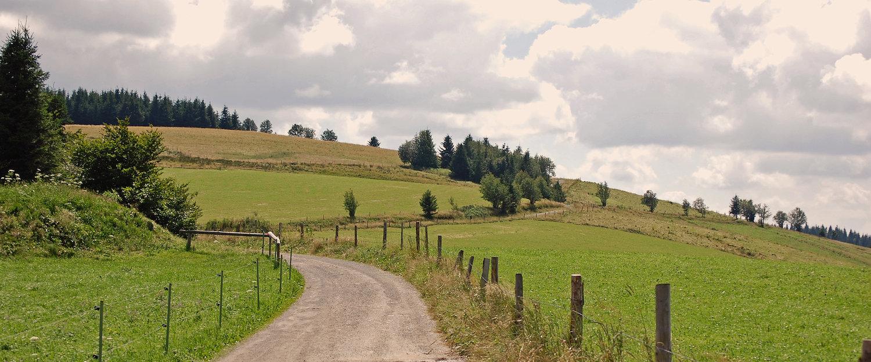Fantastisch landschap rond Badenweiler