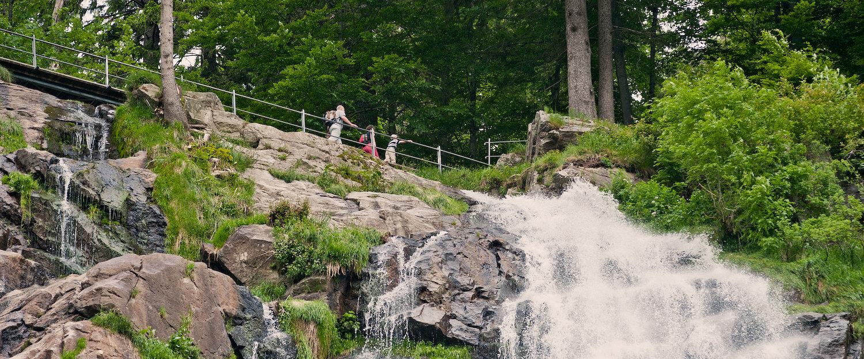 Wander- und Erlebnispfade in Todtnau