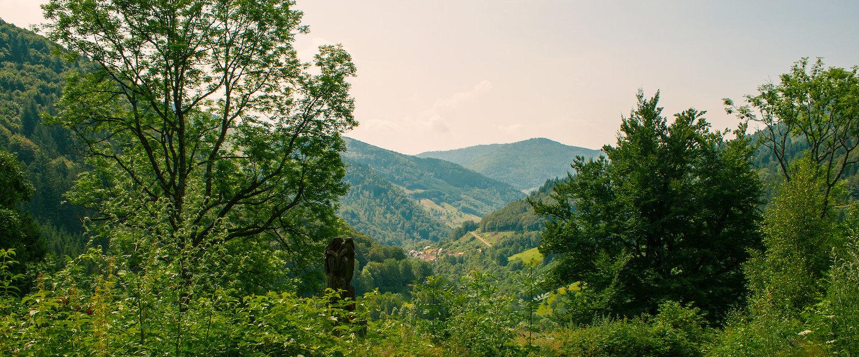 Baden-Württembergische Berglandschaft