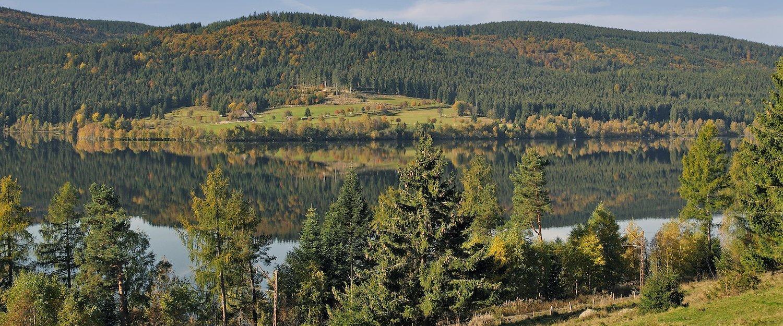 Vakantiehuizen aan de Schluchsee
