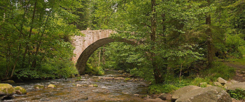 Locations de vacances dans les Vosges