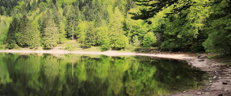 La Bresse en été