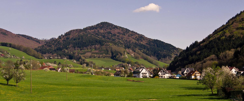 Idyllisches Schwarzwald-Panorama
