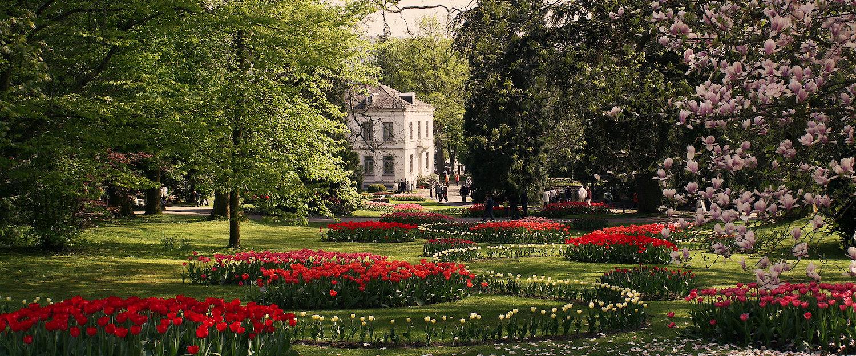 Im Stadtpark von Lahr