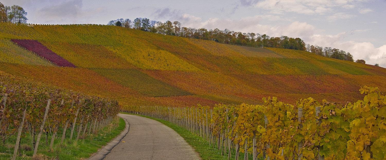 International angesehenes Weinanbaugebiet Oberkirch
