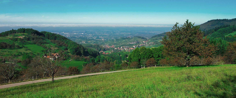Blick über die Landschaft im Schwarzwald