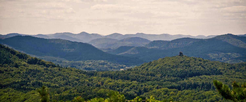 Vacation Rentals in Upper Palatinate