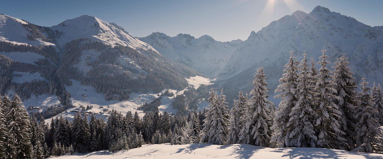 Traumhafte Winterlandschaft im Bayerischen Wald.