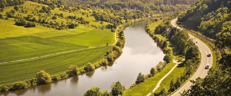 Grüne Landschaft und der Neckar