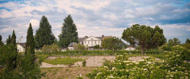 Ferienwohnungen und Ferienhäuser in Bad Dürkheim