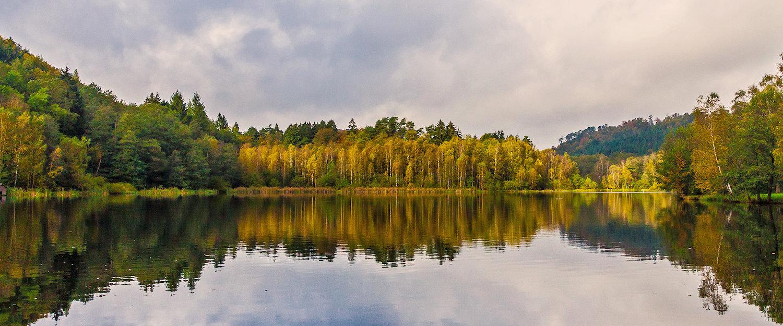 Schönen Naturlandschaft des Pfälzer Waldes mit See