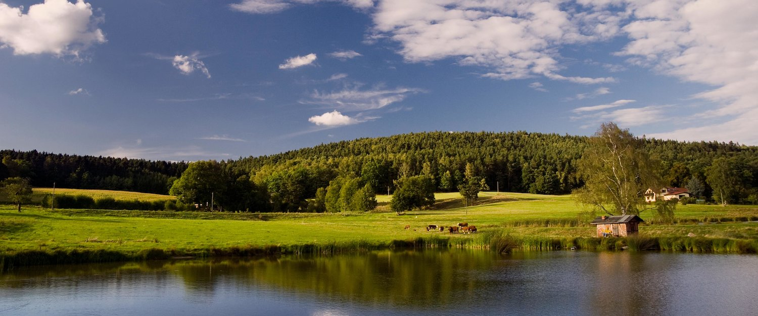 Vacation Rentals in Thuringia