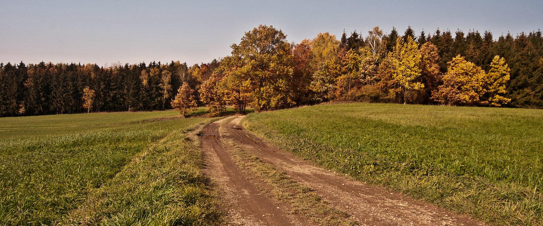Idyllisch landschap in het Saksische Vogtland District