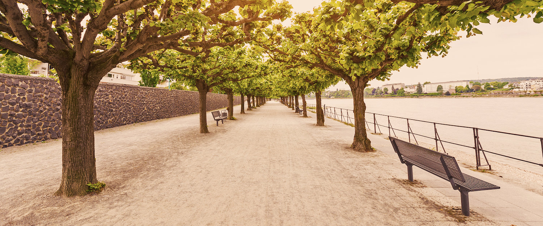 Parque en Leverkusen