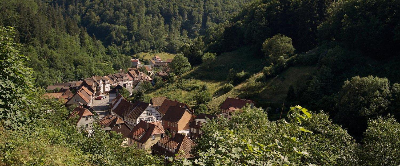 Idyllisch dorp in het Harzgebergte
