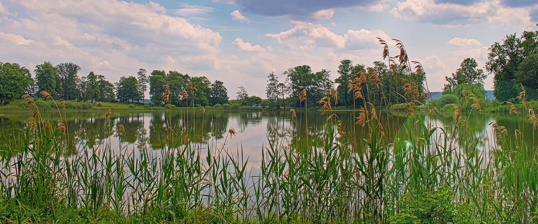Schwielowsee im Sommer