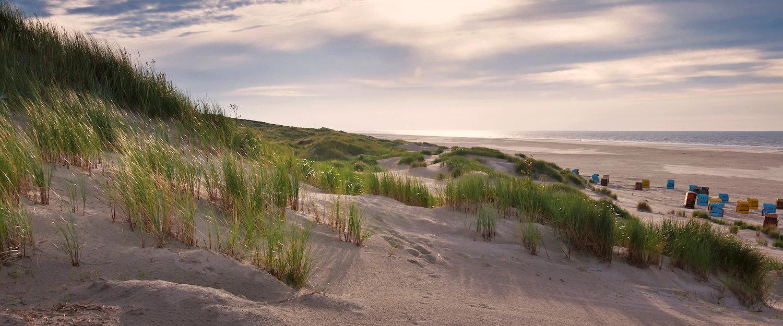 Sanddüne auf der Insel Juist in Ostfriesland