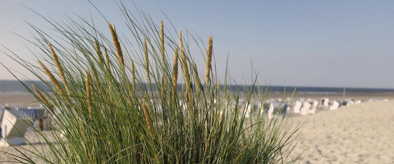 Ferienwohnungen und Ferienhäuser auf Norderney