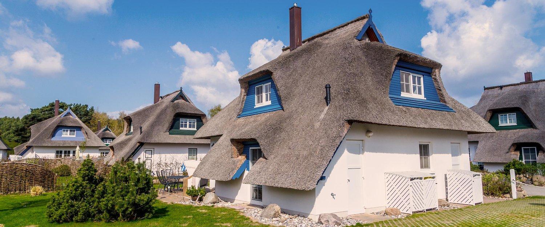 Mit Reet gedeckte Häuser in Zempin
