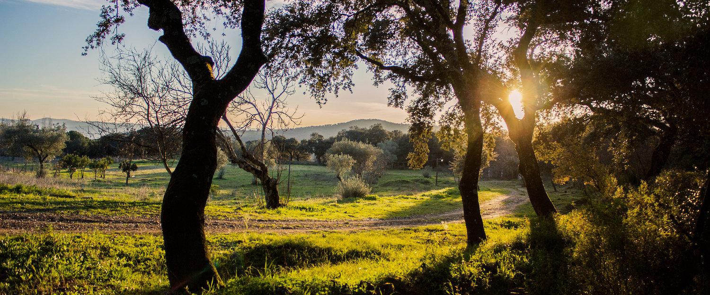 El paisaje en los alrededores de Fuenteheridos