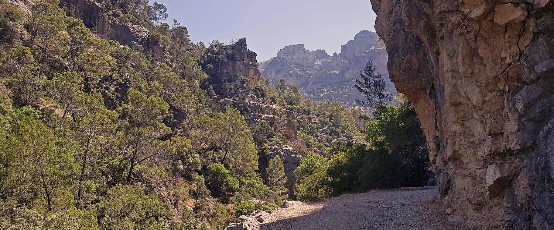 Camino rural en la sierra