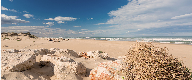 Breng een perfecte strandvakantie door in Olivia!