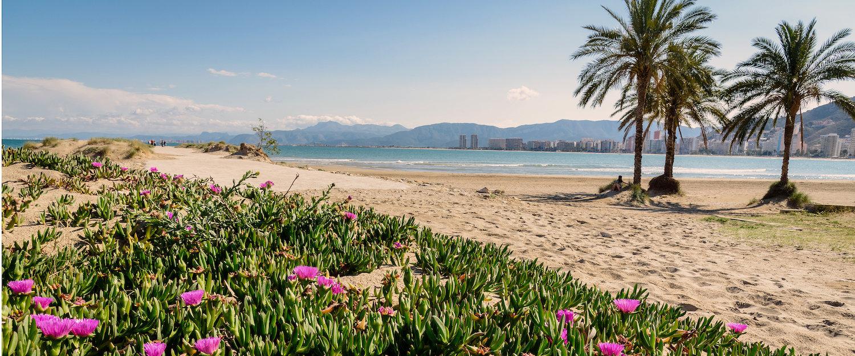 Playa paradisiaca en Cullera