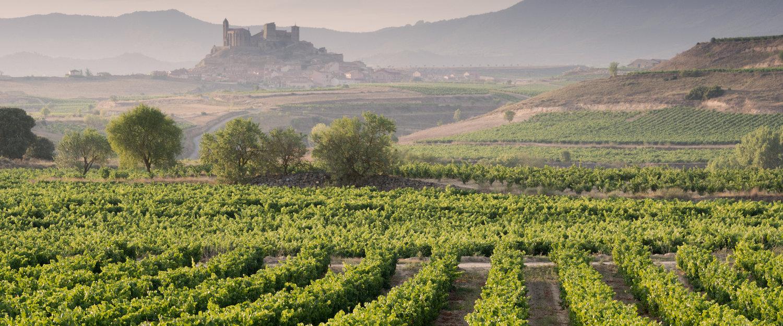 Apartamentos y Alquiler Vacacional en La Rioja