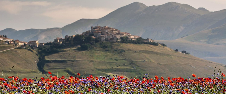 Tipico paesaggio rurale della provincia umbra.