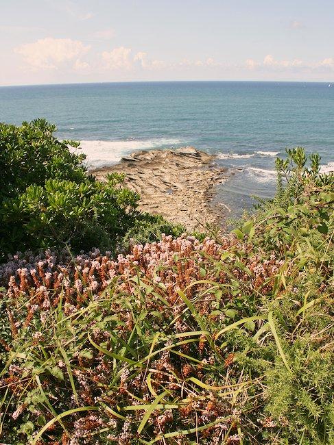 Vistas al oceano en San Juan de Luz