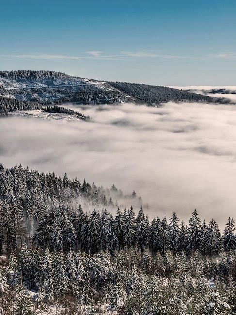 Vistas de los montes nevados en la Selva Negra